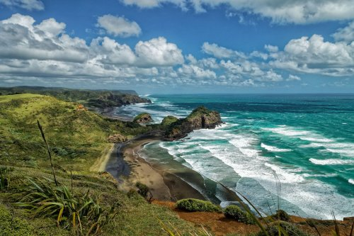 The Complete Guide to New Zealand's Waitakere Ranges