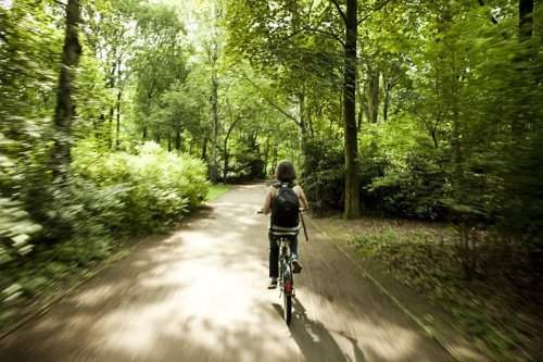 The Best Bike Trails in the Washington, DC Area