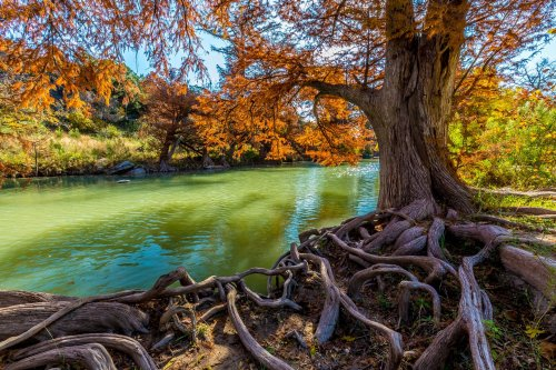 Guadalupe River State Park: The Complete Guide