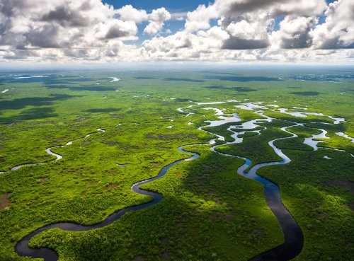 Everglades National Park: The Complete Guide