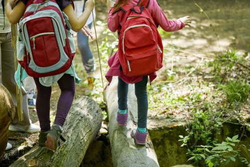 Everything You Need to Know About Hiking With Kids