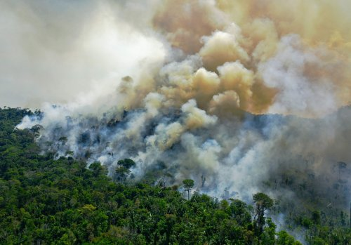 The Brazilian Amazon Is Now Releasing More Carbon Dioxide Than It Absorbs