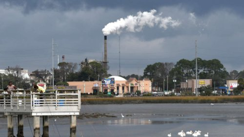 Black Residents in Coastal Georgia Are Holding Polluters Accountable