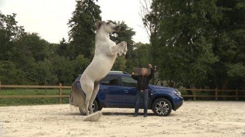 Faire du cheval est plus dangereux que de conduire une voiture de course