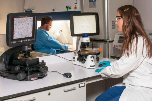 Исследователи из стран БРИКС будут совместно разрабатывать препарат от COVID-19