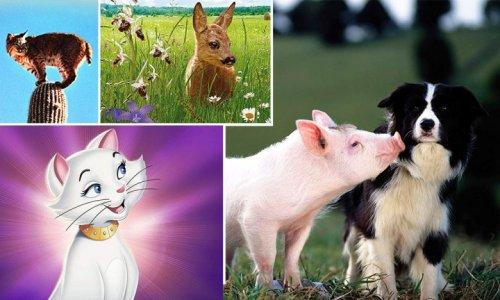 Das sind die 10 besten Tierfilme aller Zeiten