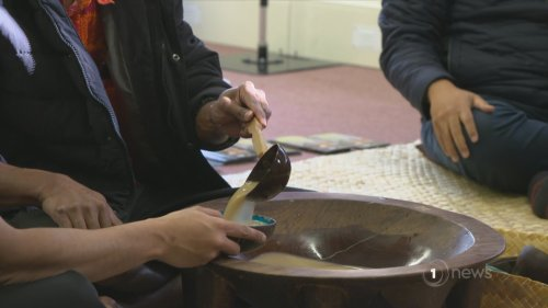 Ex-cop looking at effects of kava and driving