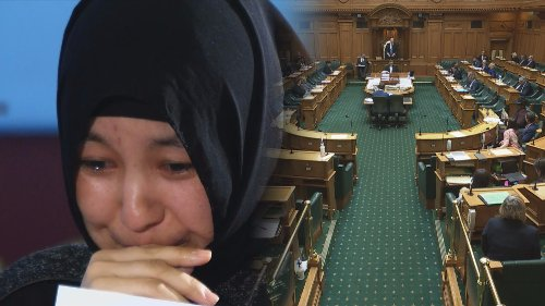 'Grossly interfering' — Chinese embassy in NZ fires shot at Kiwi lawmakers over Uyghurs support