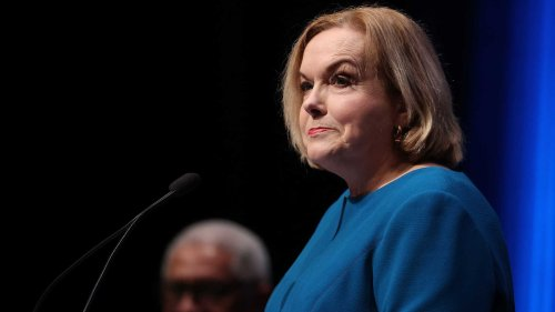 Judith Collins 'very secure' in role of National leader despite low polling