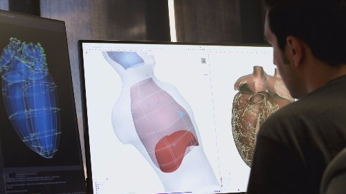 Auckland scientists use maths to recreate virtual human body and 'transform' medicine