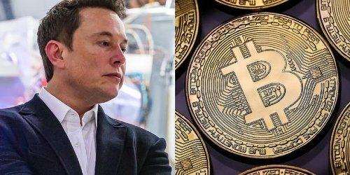 Elon Musk says you'll 'indeed' slap yourself when Tesla sells Bitcoin
