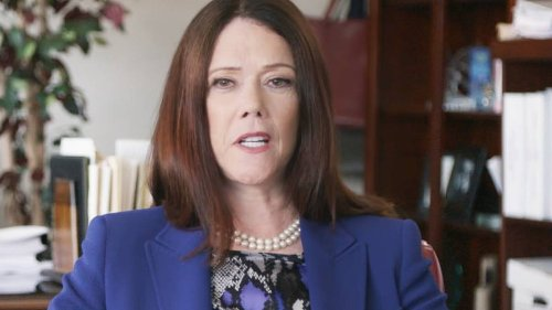Steven Avery Lawyer Kathleen Zellner Presents New Evidence Connecting Bobby Dassey And Bearded Man To Teresa Halbach Disappearance