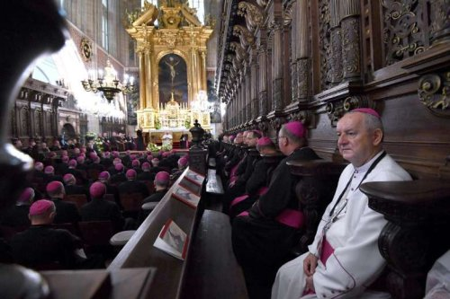 Polish bishops to meet Pope Francis amid sex abuse crisis