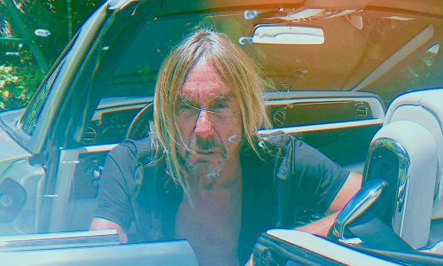 Watch The Video For Iggy Pop's Sonali Directed By Mac DeMarco