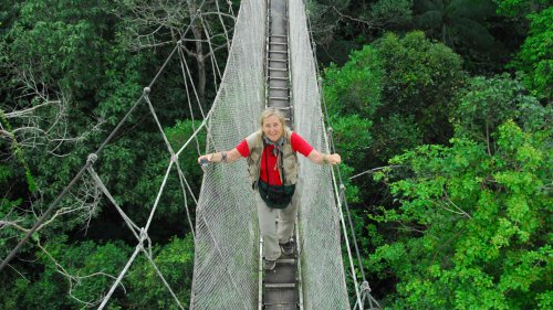 Book Review: A Scientist's Life in the Treetops
