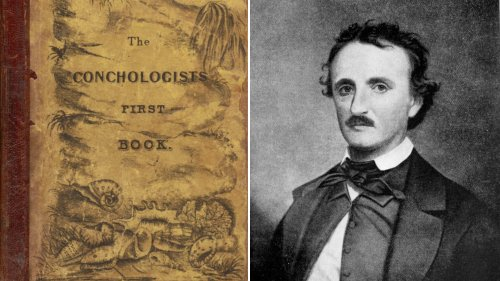 Book Review: Edgar Allan Poe's Engagement With American Science