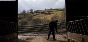 Britain betrays its farmers again