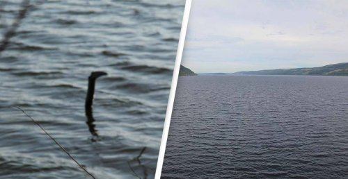 Loch Ness Monster Spotted In China