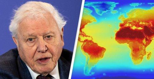 David Attenborough Warns Humans 'On Verge Of Destabilising The Entire Planet'