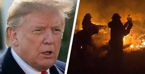 Climate Change Data Kept Secret Under Trump Shows Crisis Becoming 'More Extreme'