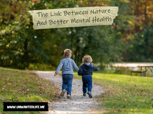 The Link Between Nature And Better Mental Health