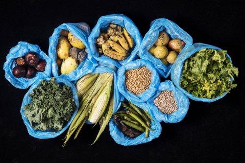 Combate ao desperdício de alimento é chave para avanço da sustentabilidade