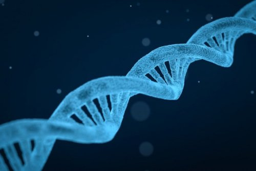 Scientists can now silence genes without altering underlying DNA sequence