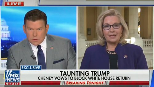 Liz Cheney Calls Out Fox News (While On Fox News) Over Trump's Lies