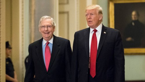 Mitch McConnell Ripped Trump As A Akin To A Past-His-Prime Old Horse