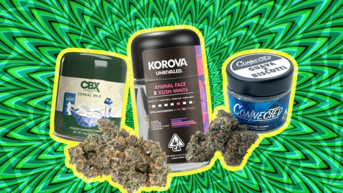 10 Weed Brands And Strains That Demand A Spot In Your 4/20 Rotation