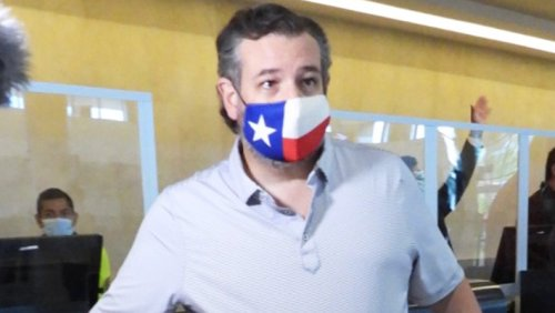 Ted Cruz's Mask-On-An-Airplane Shenanigans Come Back To Bite Him