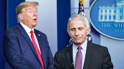 Dr. Fauci On How Utterly Bonkers Things Were Behind The Trump Scenes