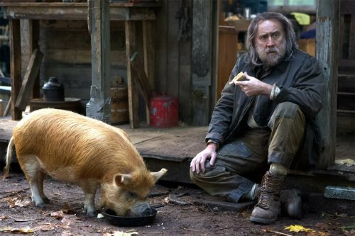 Nicolas Cage Is A Truffle Hunter Looking For A Pig In 'Pig' Trailer