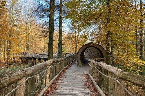 Wandern in der Eifel - 16 Wanderrouten durch die Eifel | Urban Hiker