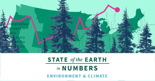 Energy & Climate | 2020 State of the Earth Facts