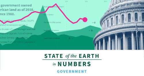 Government | 2020 State of the Earth Facts