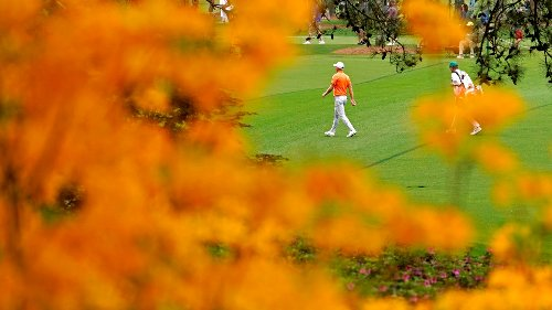 Photos: The best nature shots of the Masters at Augusta National