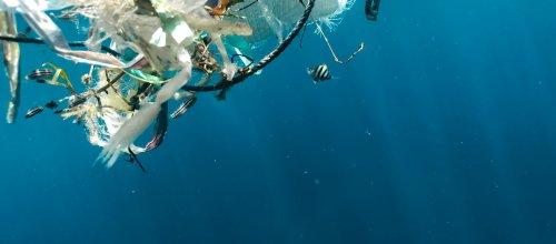 « Jenny », la barrière flottante qui bloque des milliers de kilos de plastique