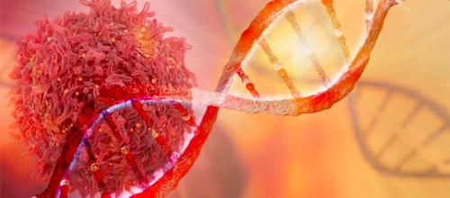CRISPR-Cas9 pourrait provoquer des cancers