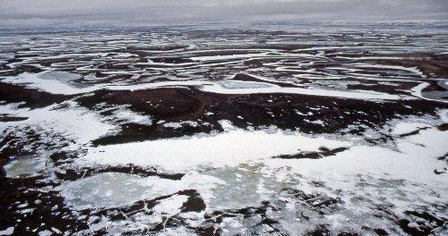 Sous le sol gelé de Sibérie, des virus géants et des bactéries résistantes