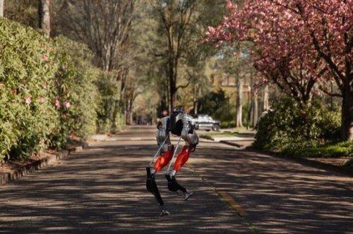 Cassie, le robot bipède d'Agility Robotics, réalise une course de 5 kilomètres