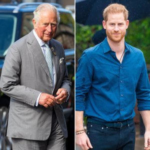 Prince Harry's Book Puts Prince Charles in the 'Firing Line,' Expert Says