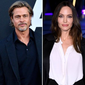 Brad Pitt's Petition for Review in Custody Case With Angelina Jolie Denied