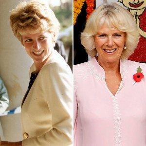 Princess Diana's Duchess Camilla Fixation Began on Wedding Day, Expert Says