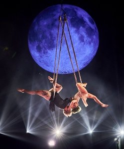 Covered in Sunshine! Pink and Daughter Willow Perform Acrobatic Stunts at BBMAs