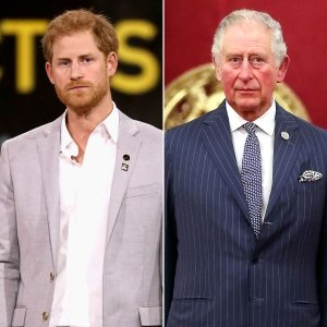 Prince Harry Plans to Parent Differently Than Charles: Breaking 'the Cycle'