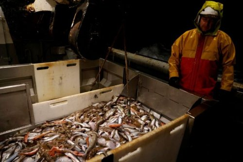 France Is Linking Post-Brexit Financial Services Deal to Fishing Access - Source
