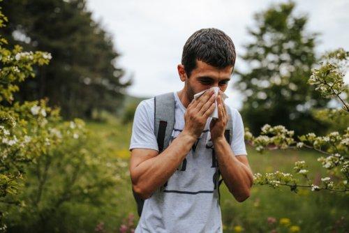 How to Treat Seasonal Allergies   US News
