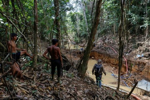 Brazil Investigates Reports of Vaccines Being Exchanged for Illegal Gold