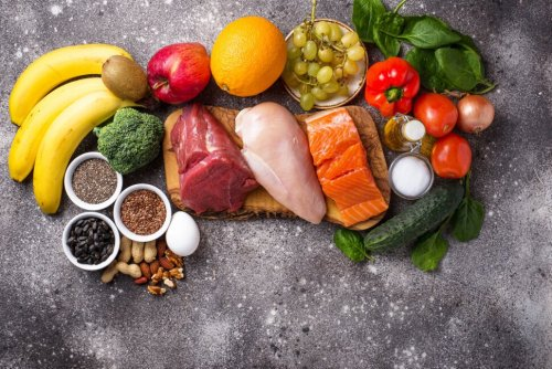 Which Diet Is Best: Plant-Based, Low-Fat or Animal-Based, Low-Carb?